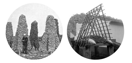 Press-Release-Redesign-Tradition-en3